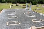 Jaenichen graves-2 plots have triplets